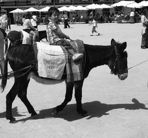 burro taxi chinchon